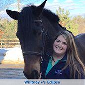 Horse Calming Supplement Comparisons - by SmartPak