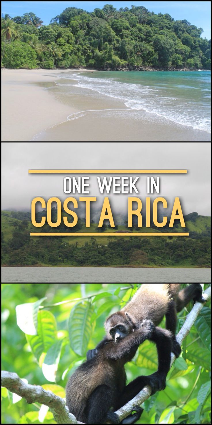 I spent a week in Costa Rica, from the cloud forests of the interior to the…
