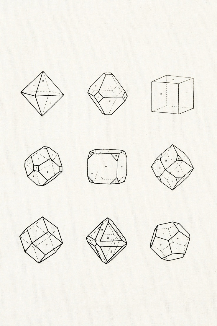 polygon line drawn shapes