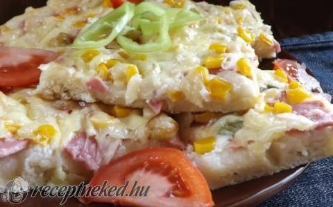 Hamis pizza recept fotóval  Hozzávalók:  Tésztához:  35 dkg liszt1 kk só1 ek sütőpor (egy tasak)1 kk morzsolt oregánó1 ek olaj5 dkg vaj/margarin2,5 dl tej  Szószhoz:  2 púpos ek sűrű tejföl3 gerezd fokhagyma1 nagy csipet só  Feltéthez:  12 dkg szalámi2 szál újhagyma3-4 ek csemegekukorica2 nagy marék reszelt