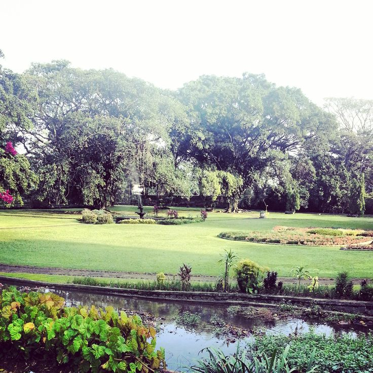 Botanical Garden, Bogor, Indonesia