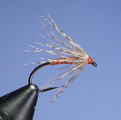 The Road to Wingless Wets - Soft Hackles, Spiders, and Flymphs. - Global FlyFisher