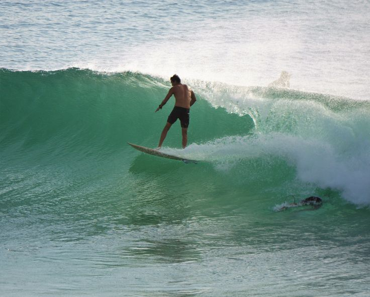 Catching a wave on the Gold Coast