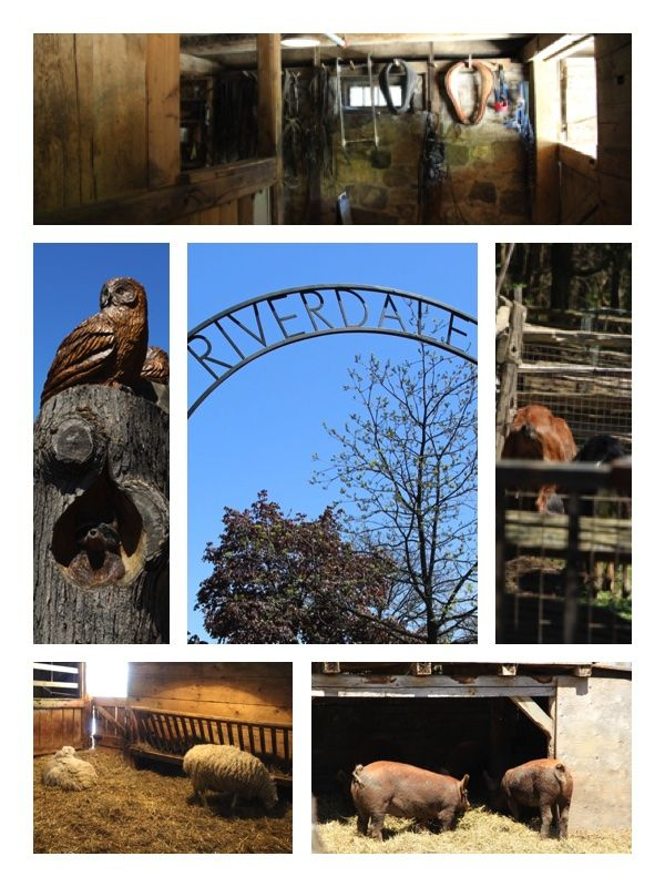 Pictures of Riverdale Farm