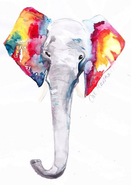 Color, Elephant, Animal Watercolor, Delicately Beautiful.