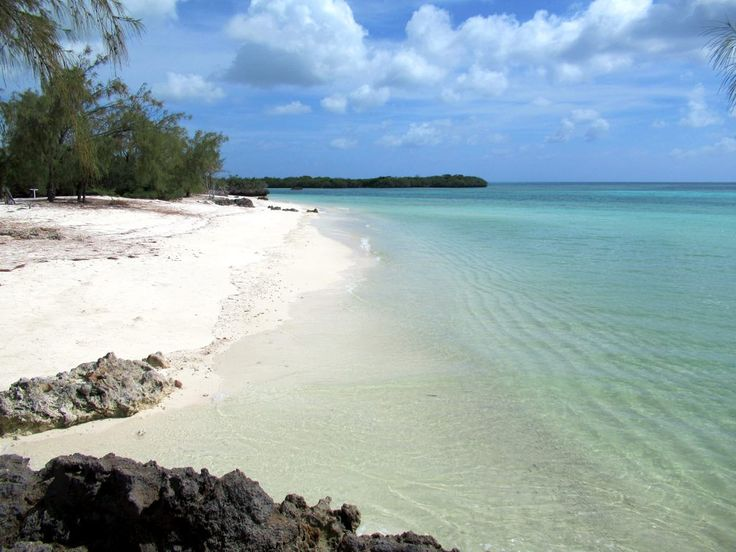 Near perfect white sand beaches line the western shore of Picard Island near the scientific research station on Aldabra Atoll, Seychelles.