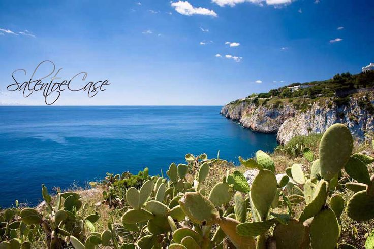 Novaglie - a great place to #discover in #Salento, #Puglia, Italy. Find your #house for your next #summer #holiday.   #renthouse #vacation #casevacanze #beach