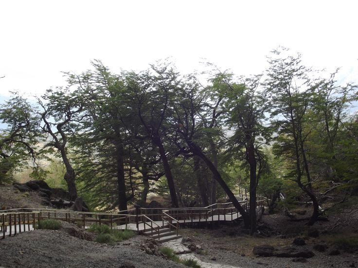 Cueva del Milodón, Torres del Paine, Chile