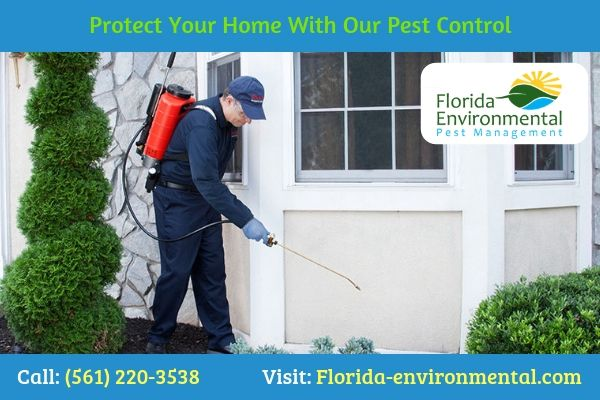 Looking For The Quality Pest Control Technicians At Florida Environmental Pest Management We Identify And Pest Control Pest Management Pest Control Services