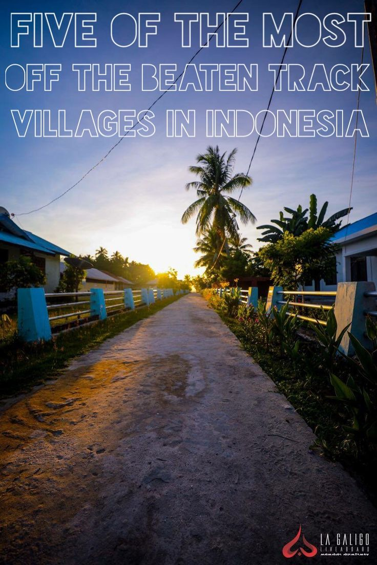 Discover some of the most untouched villages around Indonesia.   http://www.lagaligoliveaboard.com/category/tour-packages/