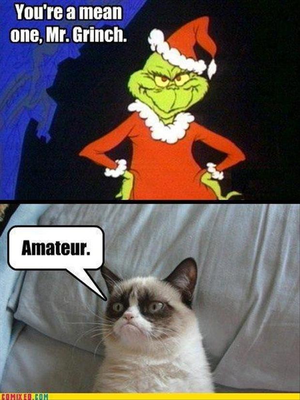Grinch Grumpy Cat