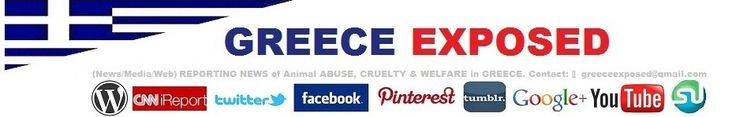 greeceexposed.com. Documenting animal cruelty in Greece. Home page. Daily reports.(News-Media-Web) --Posted to Desert Hearts on  - 9/27/2013 DESERT HEARTS Animal Compassion— Phoenix, Arizona --- https://www.facebook.com/desertheartsphoenix