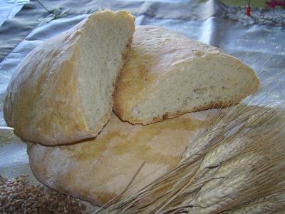 Lazio - Pane Giallo di Allumiere (Roma) - È un pane di semola di farina di grano duro rimacinata (due volte); la sua produzione è legata alla disponibilità del solo grano duro per la panificazione.   E' caratteristico per il colore giallo della sua mollica, dovuto all'utilizzo del grano duro come unica materia prima