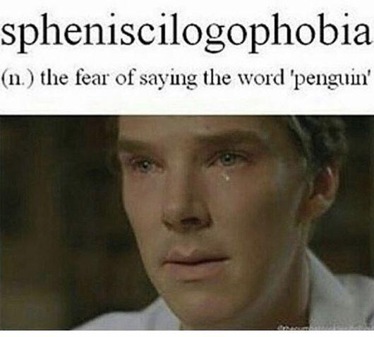 Plz help Benedict by calling 1-800- Pengwing.