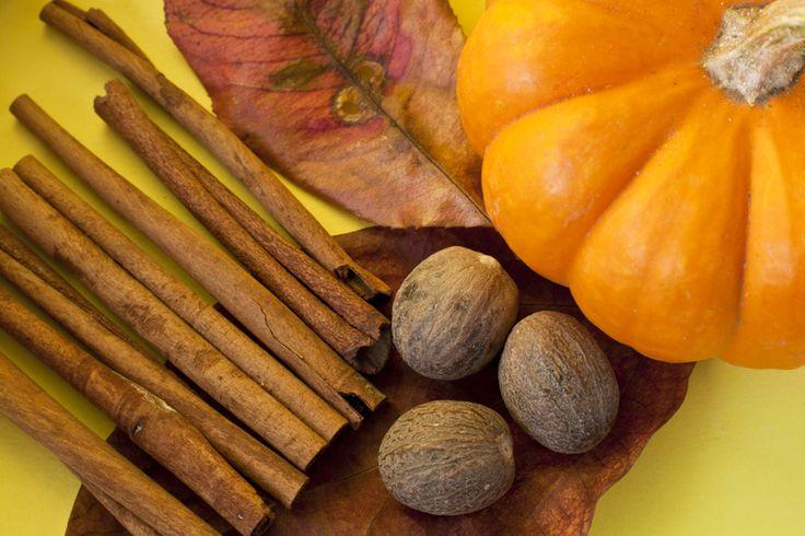 Pumpkin Pie Protein Blast - Recipes
