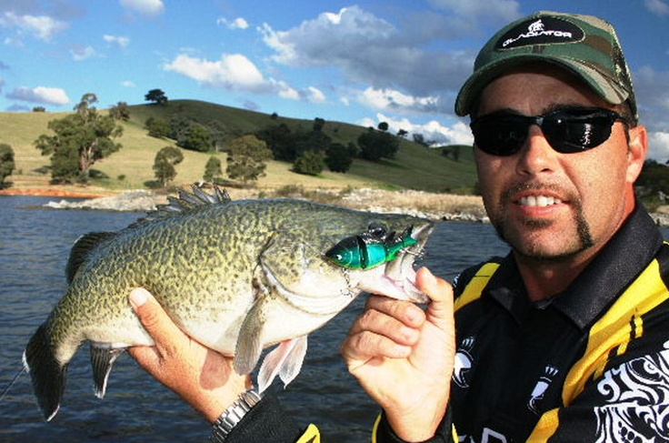 Wayne Dubois with a Balista Alive swimbait caught Murray Cod
