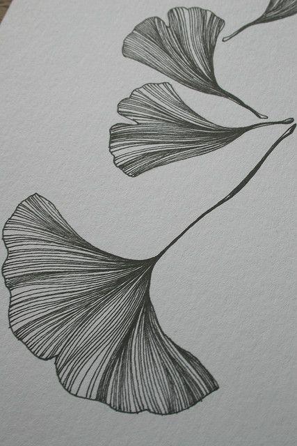 Leaf / Ginko / Feuille / Tattoo / Graphic / Ginkgo Biloba / Mamie / Grand-mère