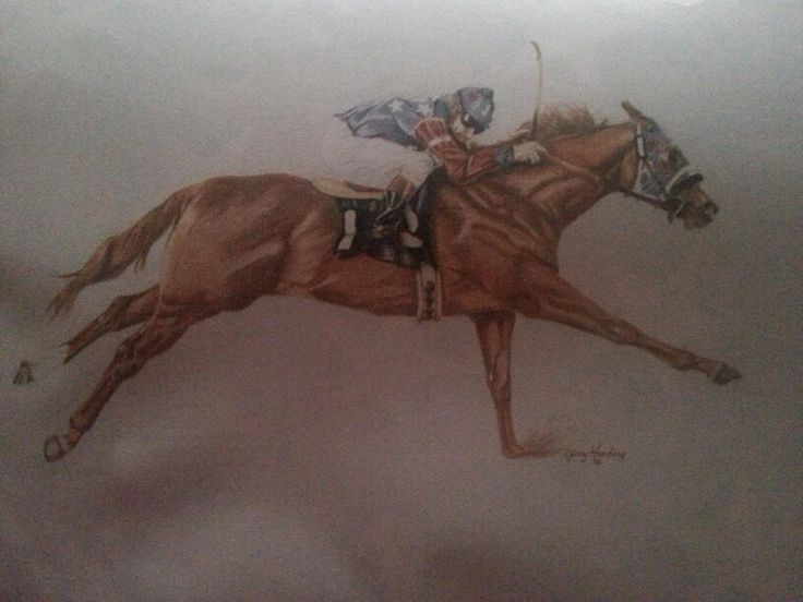 297 best Race Horses I...