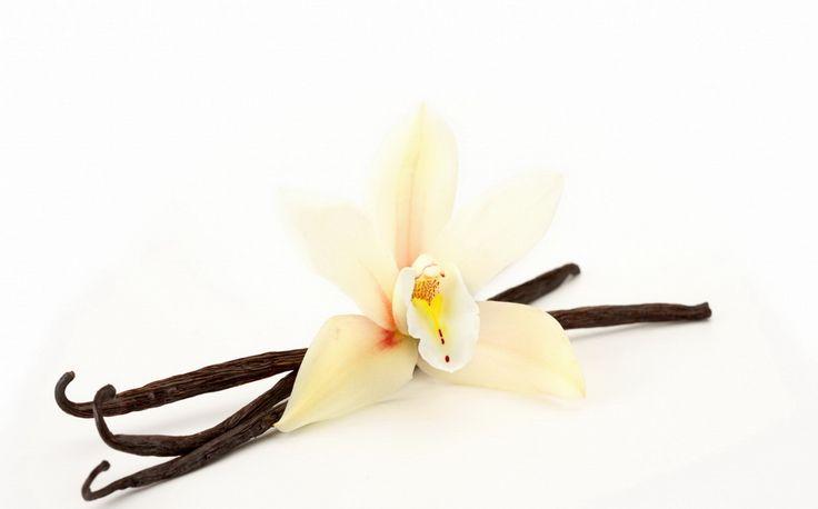 Het aroma van vanille, staat gelijk aan kalmerend, relaxed en sensueel.