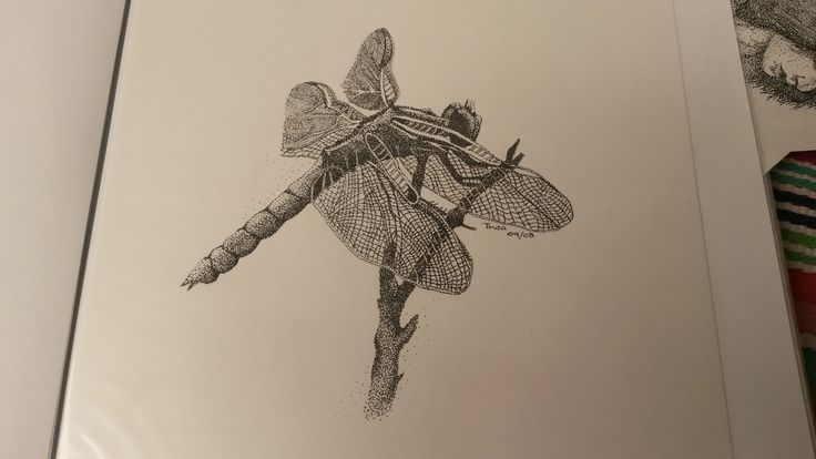 Pointillism Dragonfly by Thea Loots