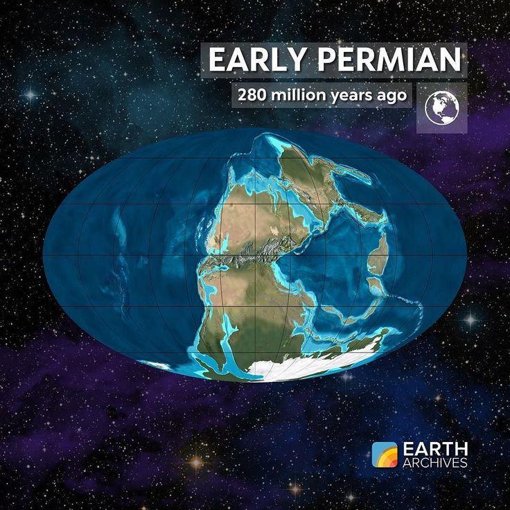 Earth Sciences: 235 Best Paleontology & Biology Images On Pinterest