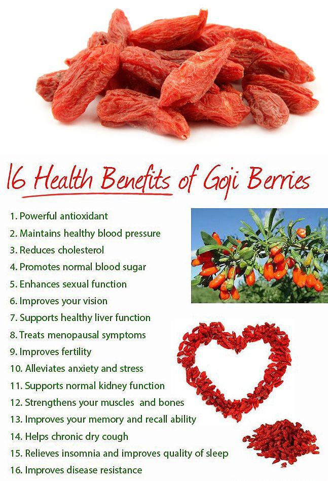 16 Health Benefits of Goji Berries http://essentiallivingfoods.com/products/goji-berries
