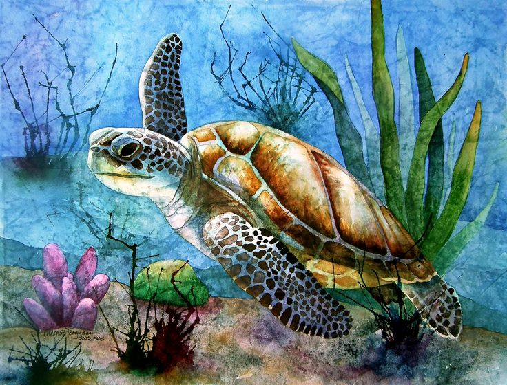 Art illustration - Oceans & Seas - Sea Turtle: (Chelonioidea) They have some shells that join laterally, which protects them from predators and variations in temperature. They can live 150 to 200 years after its kind. They can reach 27 km / h to 35 km / h swimming in the sea. Turtles do not have teeth because they have been replaced by sharp spikes at the top of his mouth. Also they do not have external ears, but a very efficient inner ear.