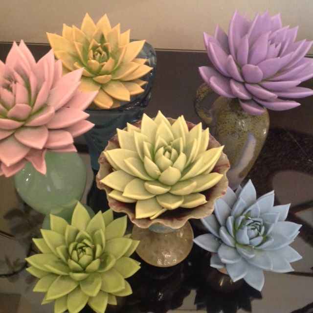 SUCCULENT PLANTS.. SOME OF NATURES LITTLE WONDERS! SUPER COOL IN EVERY WAY.