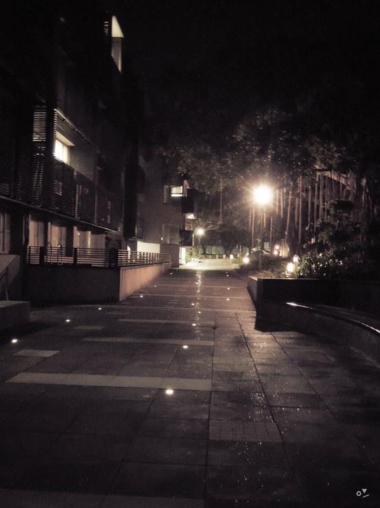 ✐ [02] _2013/5/29  每天都要經過的路 每天都會看見的景  每次都覺得自己走在點滿光明燈的的大道上 希望未來也是一片光明~