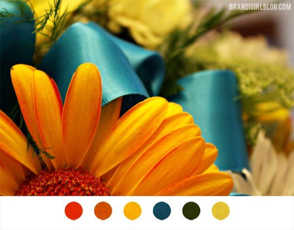 red orange blue black yellow