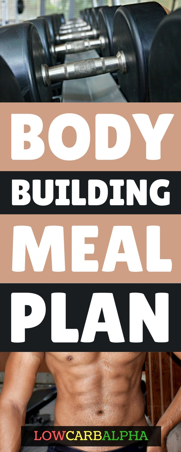 body building meal plan https://lowcarbalpha.com/bodybuilding-meal-plan-beginners/ what to eat when exercising with lifting weights #lowcarb #keto #bodybuilding #lowcarbalpha