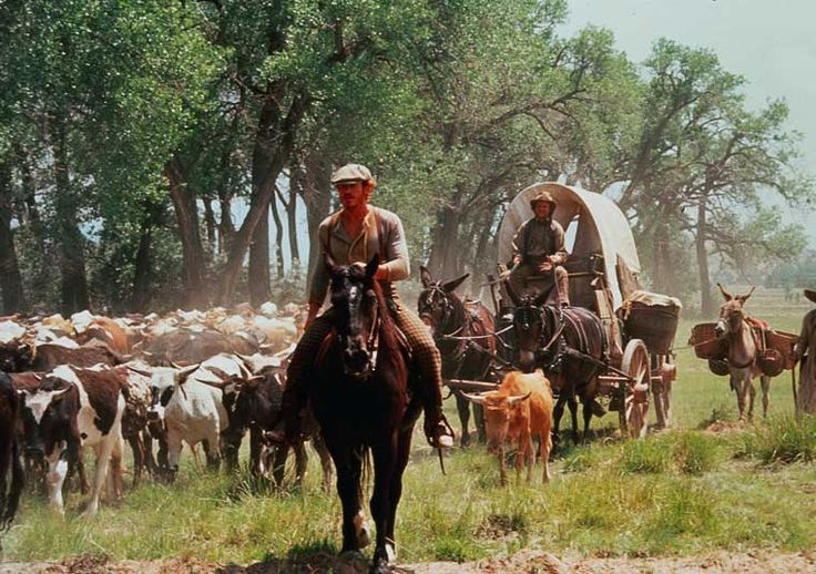 138 best lonesome dove images on pinterest