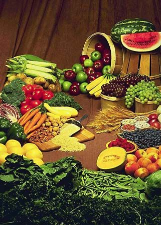 Material consisting essentially of protein, carbohydrate, and fat used in the body of an organism to sustain growth, repair, and vital processes and to furnish energy. Food is treated in a number of articles....