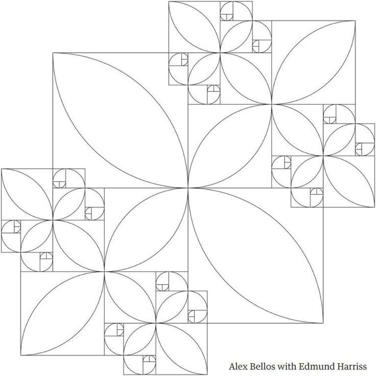 the beauty of mathematics in pictures alex bellos - 474×474