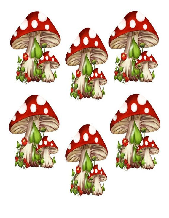 Vintage Mushrooms clipart 6 Illustration by SAVVYCOUNTRYDESIGNS