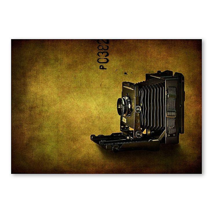 Camera Print Art by Americanflat | Zanui