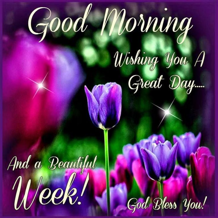 Good Morning, Wishing You A Great Day And A Beautiful Week!