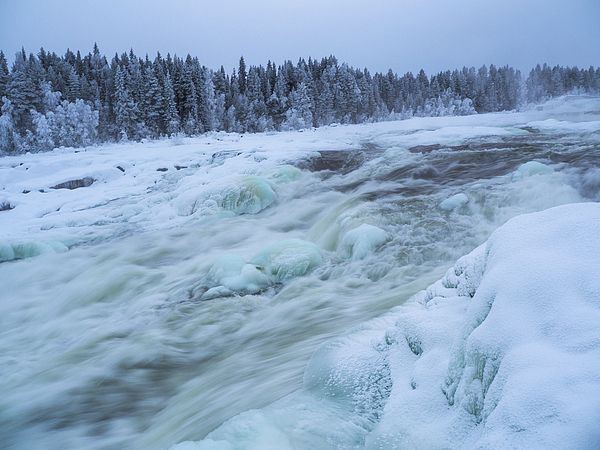 "#FineArtPhotography by #Tamara SUshko#FineArtLandscapes #Zen #Nature #HealingArt #Canvas #HomeDecorNone #FineArtPrints #Norrbotten ""Sweden"