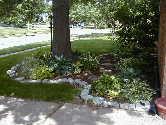 Front Yard Landscaping Under Trees : Best images about landscaping on gardens