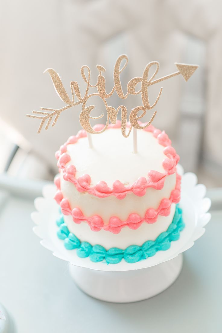 Wild One Birthday Party For A Little Girl Teal Blush Light Pink