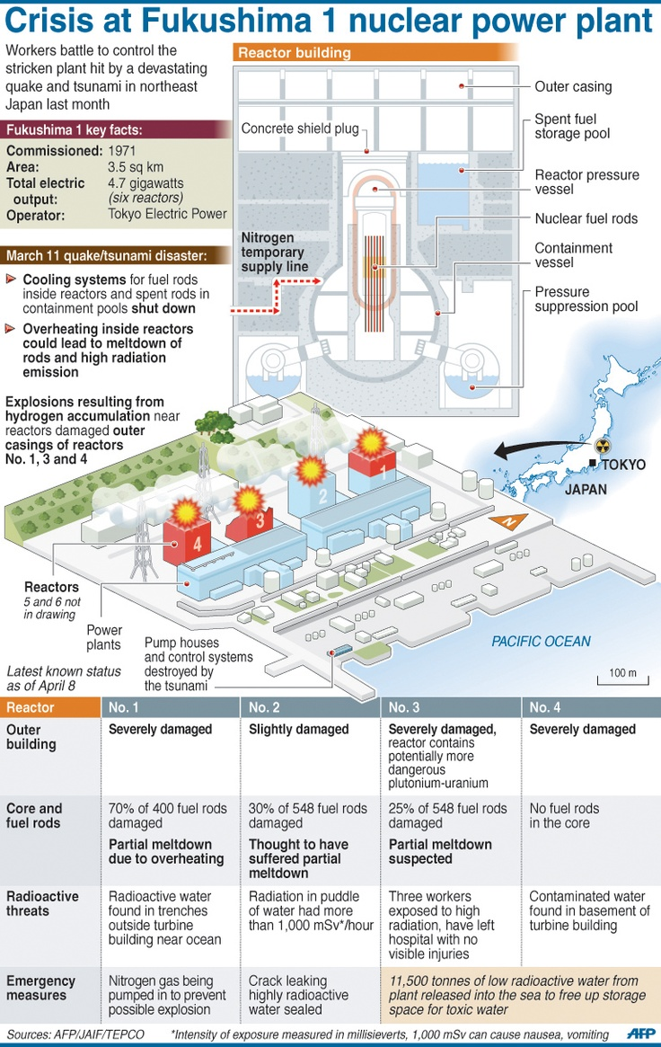 worksheet Nuclear Power Plant Diagram Worksheet 23 best strawbridge images on pinterest nuclear power graphic with illustrations of the fukushima 1 plant and parts a reactor building