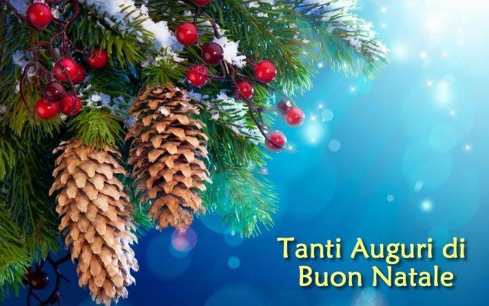 Albero Di Natale Whatsapp.Immagini Di Natale Per Whatsapp Whatsapp Web Whatsappare Christmas Wallpaper Snowy Christmas Tree Christmas Tree Decorations