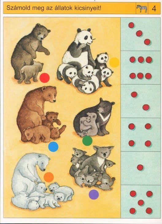 Begeleide of zelfstandige activiteit - Hoeveel jonkies heeft ieder dier?