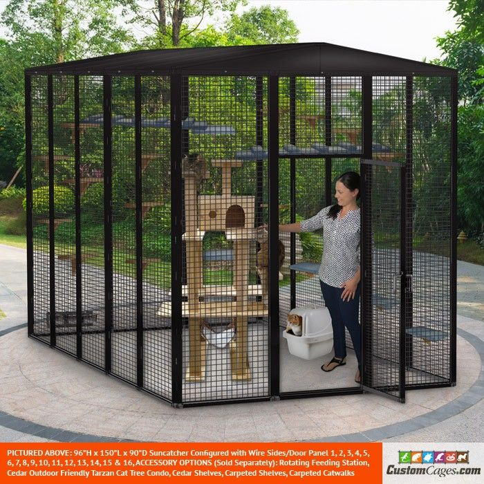 Cat Boarding With Outdoor Play Area 10