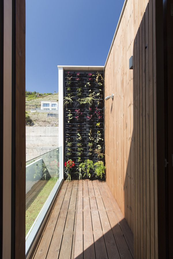 Beautiful cute and modern vertical garden on a wooden balcony terrace by studio dois