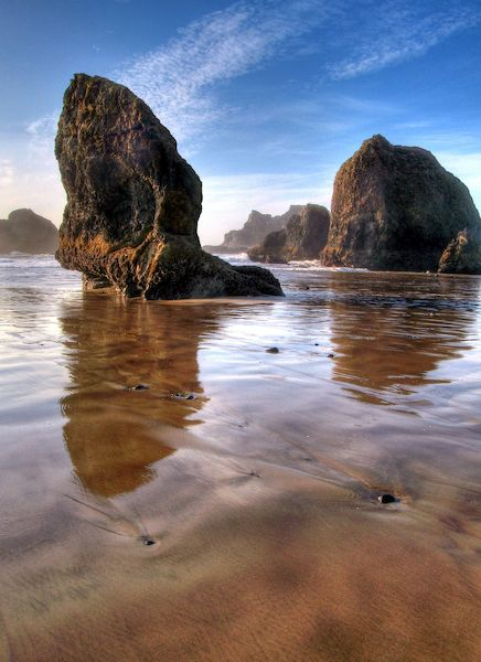 Best Beaches In Oregon To Find Sand Dollars