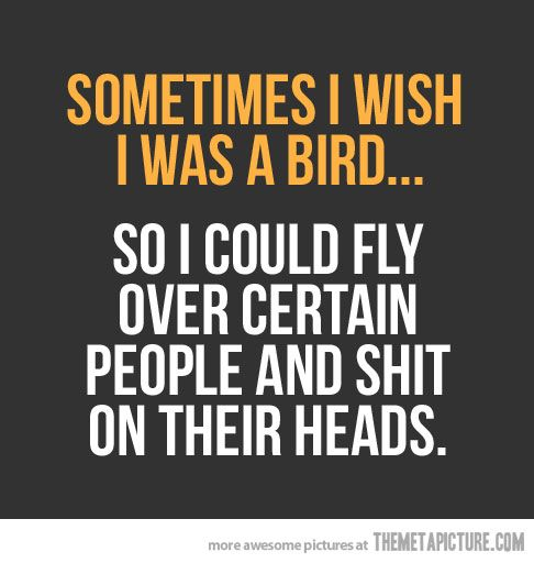 Sometimes, I wish I was a bird… :-D