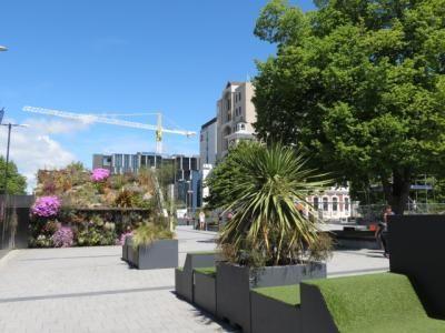 Christchurch 66
