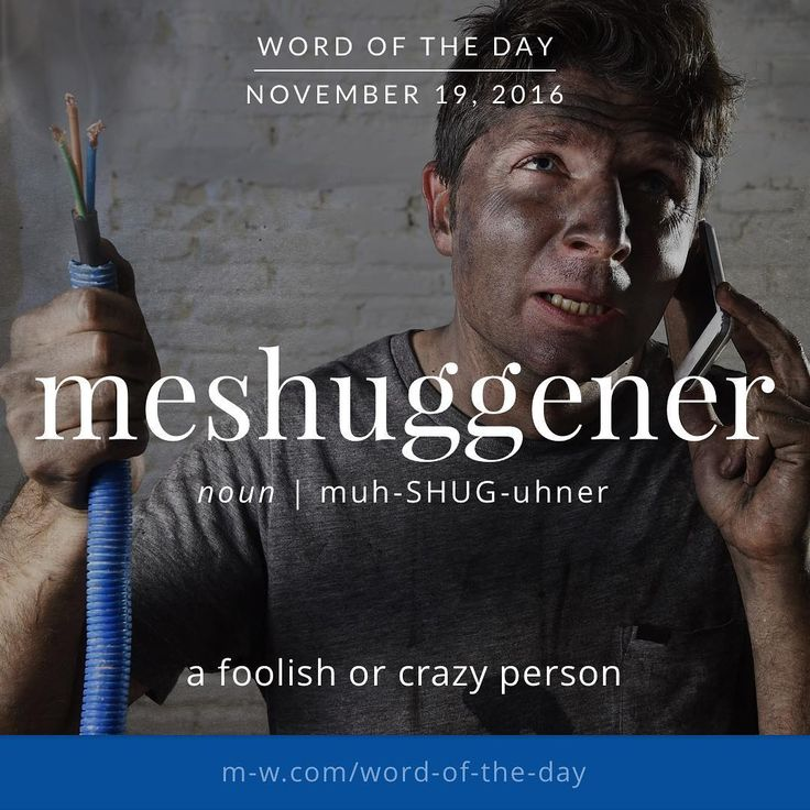 The #wordoftheday is meshuggener. #merriamwebster #dictionary #language