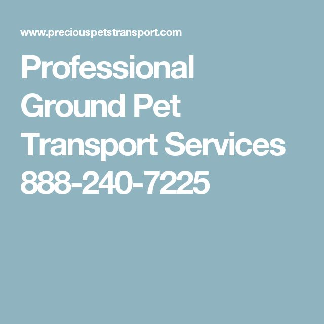 Professional Ground Pet Transport Services 888-240-7225